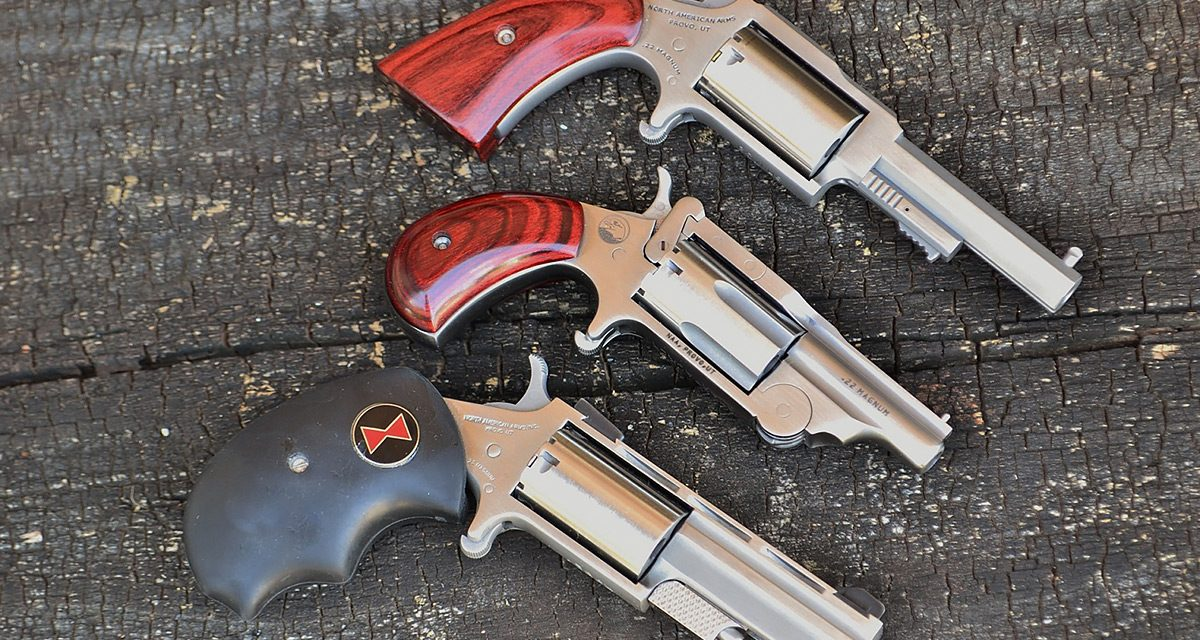 North American Arms Ranger II: Best Revolver for CCW