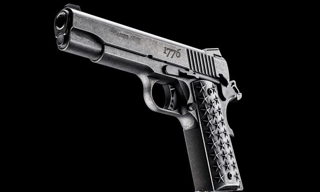 SIG 1911 We The People