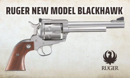 Ruger New Blackhawk Stainless .357 Mag