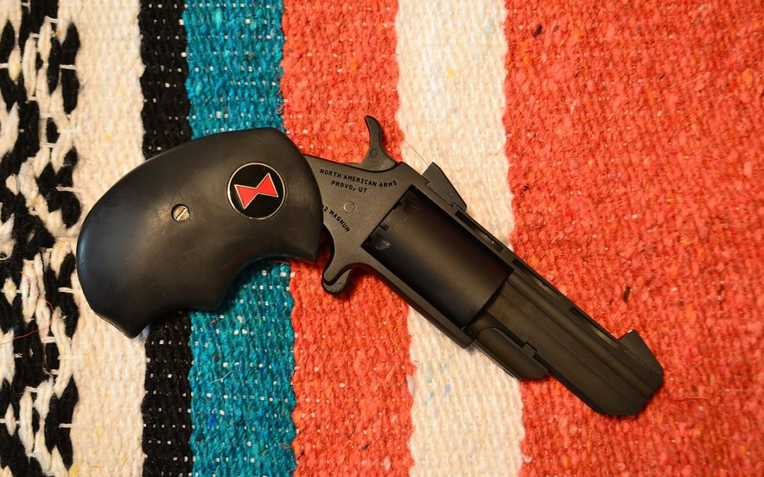 North American Arms Black Widow Black Finish Review