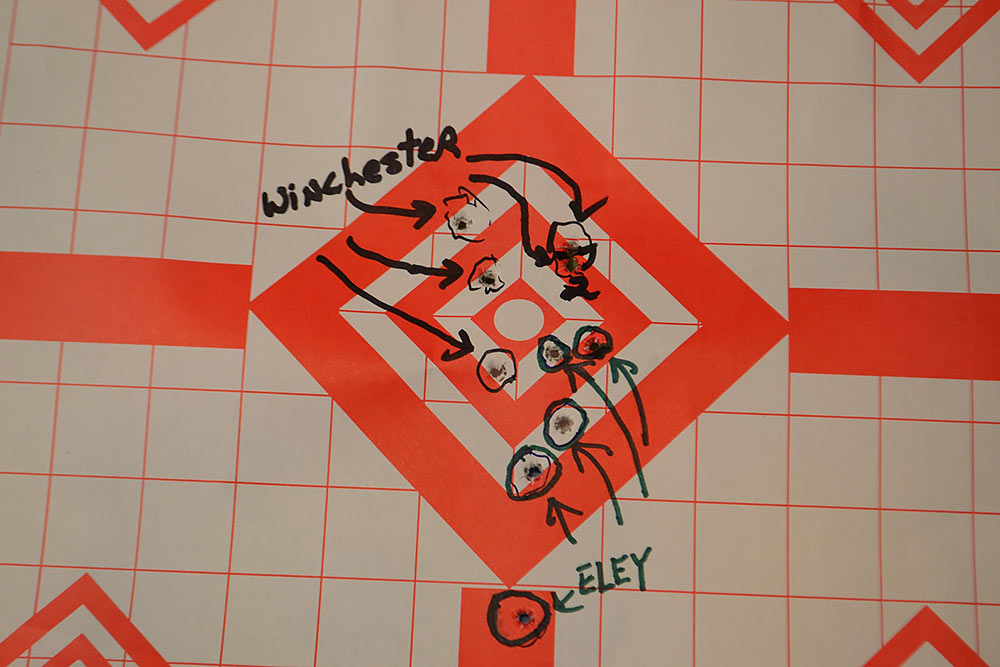 Ruger 10/22 target practice