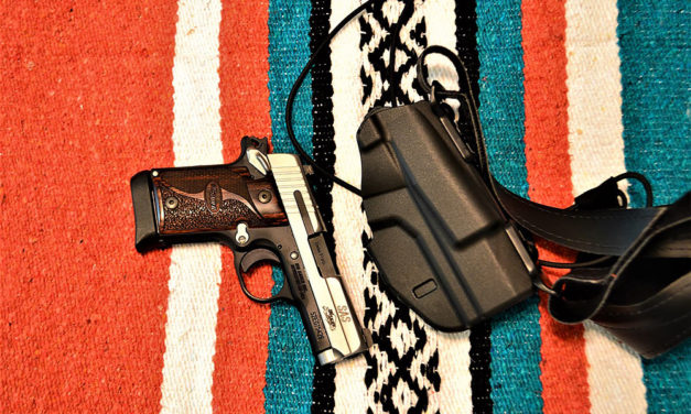 Review: Safariland Shoulder Holster Model 7053 7TS ALS
