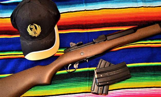 Ruger Mini-14, An Old Warrior but Still Deadly